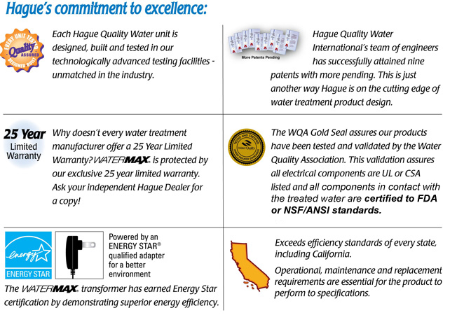 Hague's Commitment to Excellence